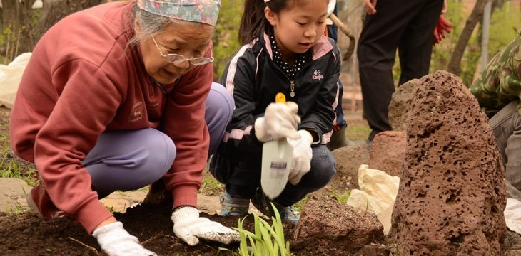 ロ極東の本願寺跡で植樹