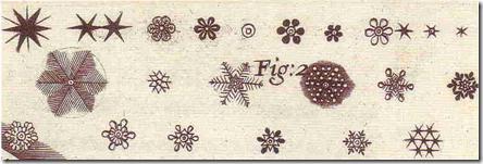 sneg 3 Robert Hook