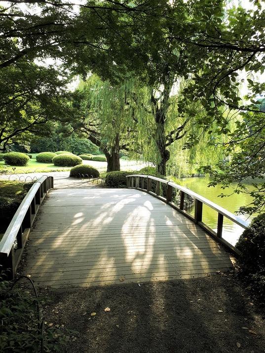 Сад Синдзюку Гиён 2