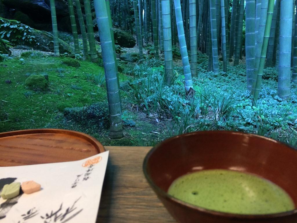 Чаепитие в бамбуковой роще